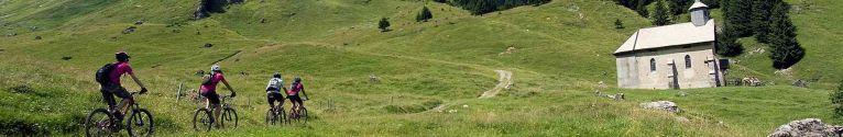 mountain-bike-summer-264